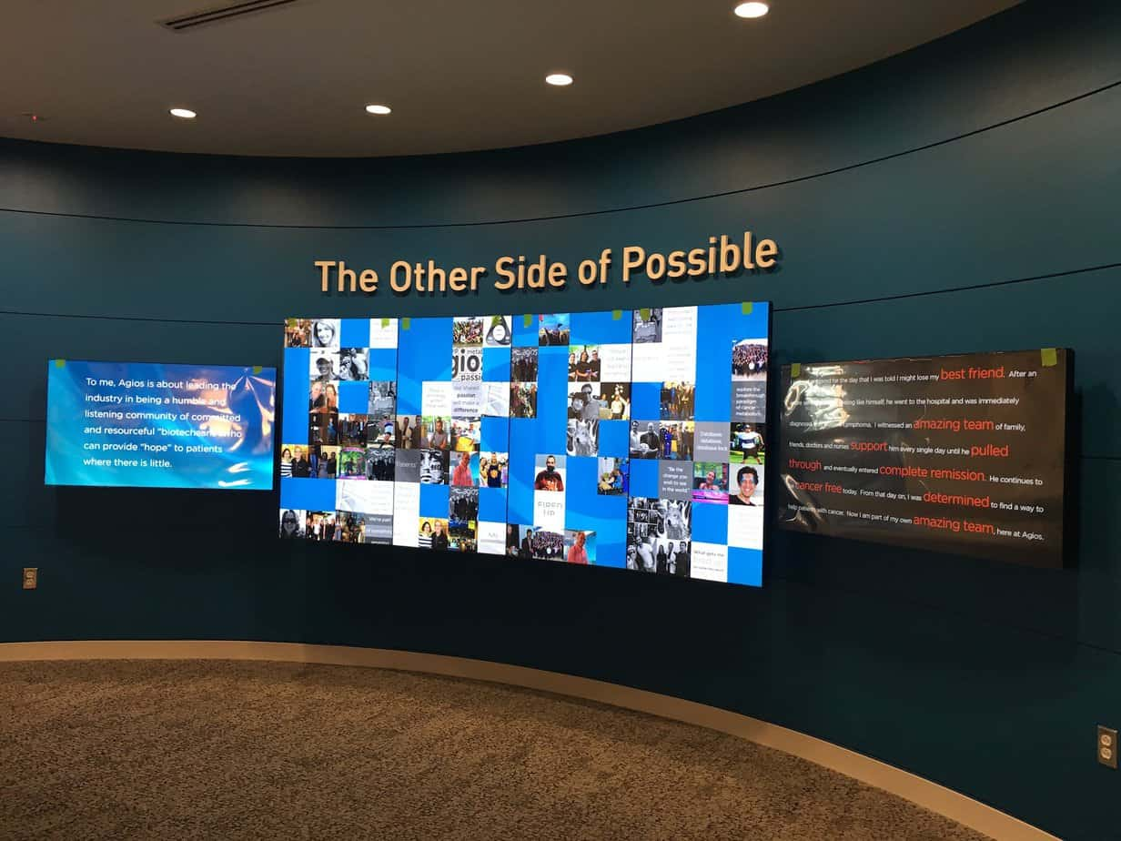 Digital Signage vs. Video Wall: Which Is Best?